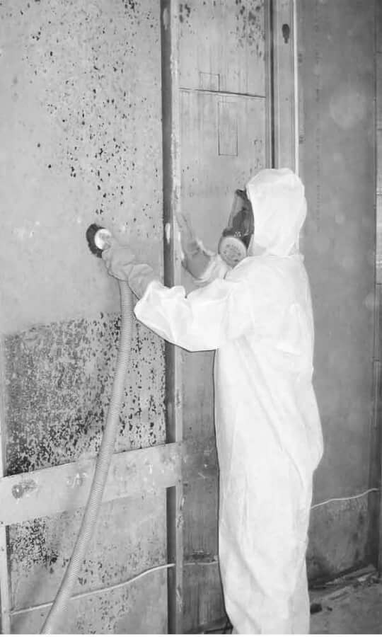 mold-removal-services-near-me-houston
